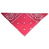 RTD-1015 - Pink Fuchsia Paisley Bandana