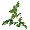 RTD-1485 - Jungle Vine Garland - 6 foot vine