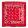 RTD-1358 - Red Paisley Bandana