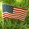 RTD-2401 - Small Plastic American Flag